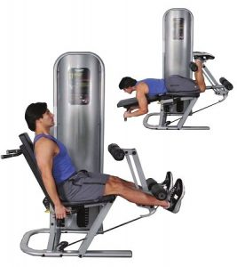 Inflight Fitness Leg Extension and Leg Curl Machine