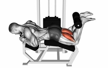 Benefits Of The Leg Curl Machines