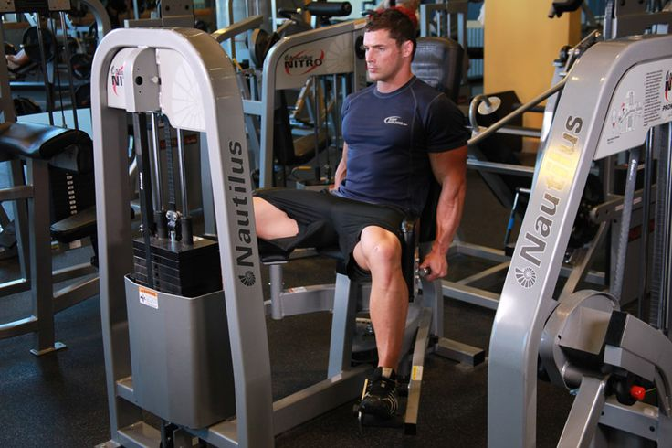 Legs and Glutes Workouts For Building Muscle and Strength