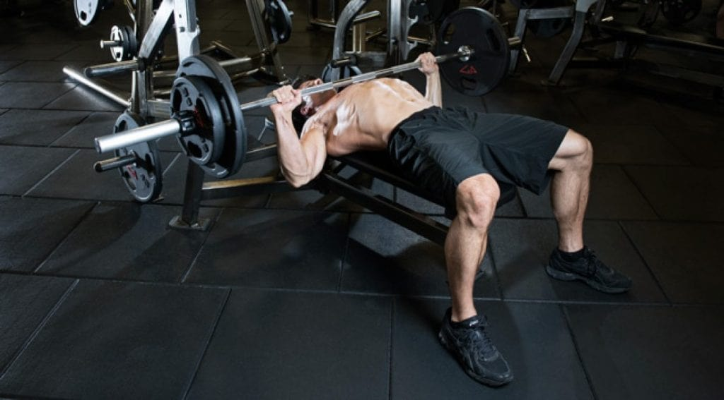 Beginners Guide to the Bench Press