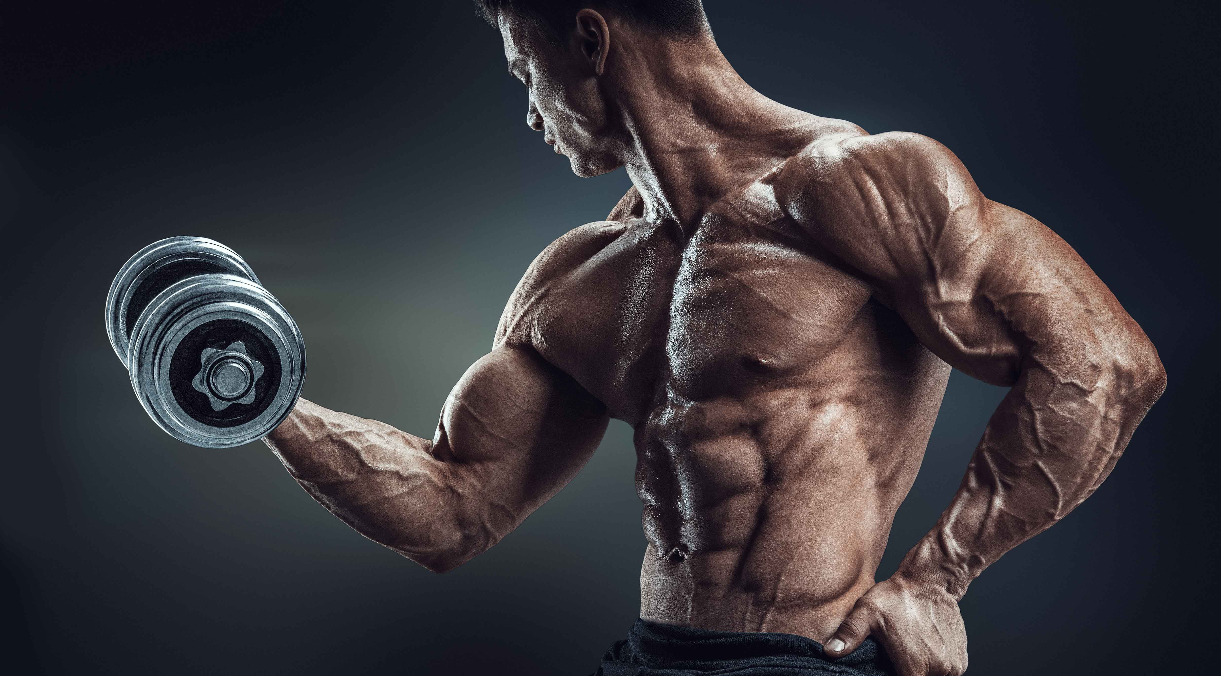 dumbbell-biceps