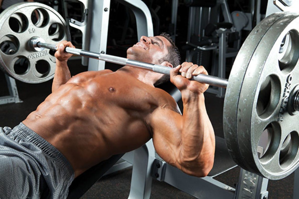8 Best Bench Press Machine Reviews Ratings Buying Guide