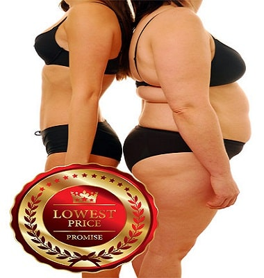 fat to fit at lowest prices